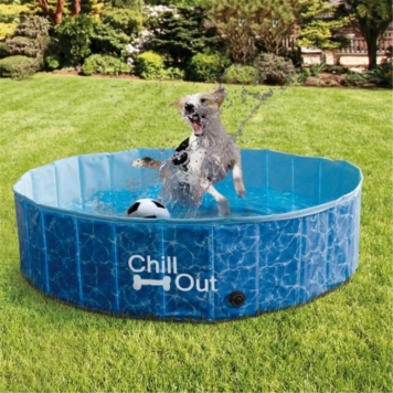 Pool for Dog